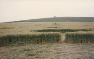 crop-circle-UK-12-chakras